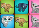 Big Cats Memory Game